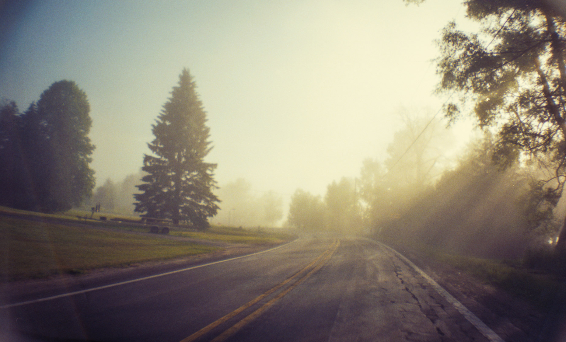 foggy morning drive